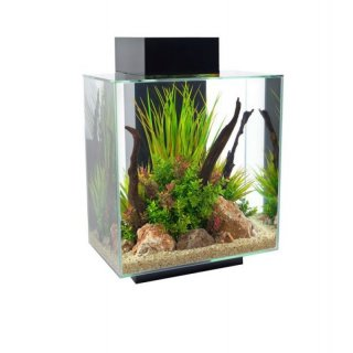 Fluval Nano Aquarium Edge 46L, LED, schwarz